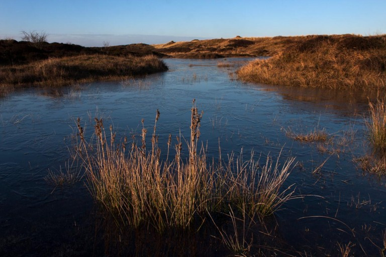 Photo of nature reserve Duinen van Texel