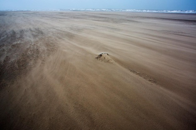 Photo of the North Seacoast near Petten, the Netherlands