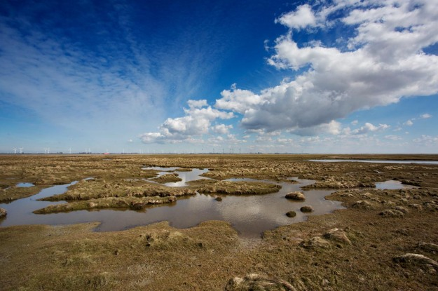Photo of Punt van Reide, the Netherlands