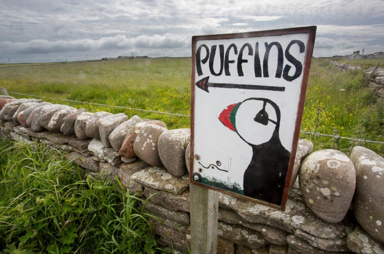 Photo of a sign, Castle O' Burrian, Westray, Orkney